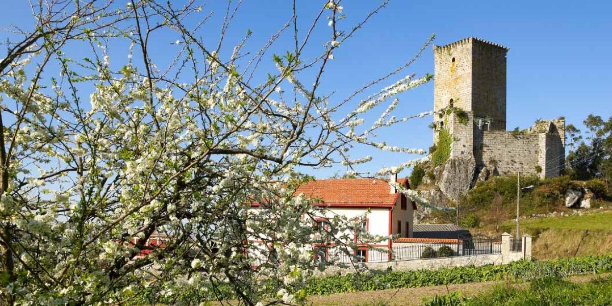 Castelo de Andrade (Pontedeume)