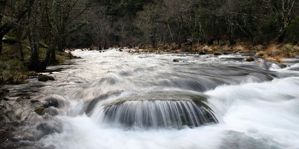 Río Sor