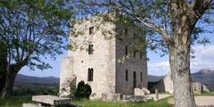 Torre Fortaleza Pardo de Cela (Alfoz)